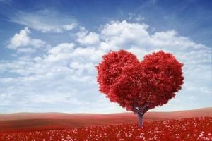 10の質問でわかる「愛され願望度」