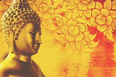 【仏占い】怒りの対処法を仏様が伝授!